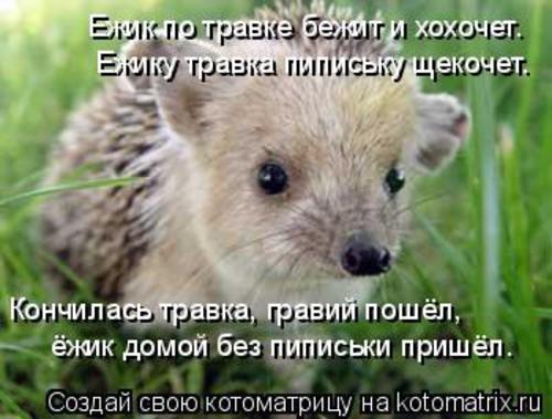 muj_ejihi_))).jpg