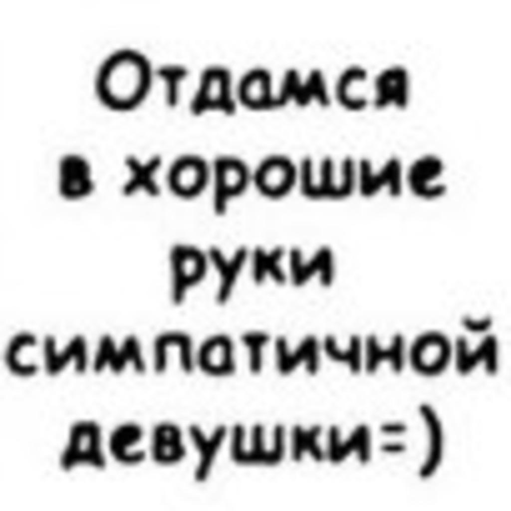 otdamsya-besplatno-moskva